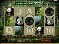 untamed-panda